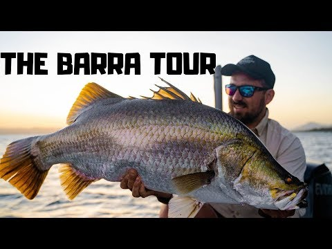 Barramundi Fishing Tour - Peter Faust Dam!