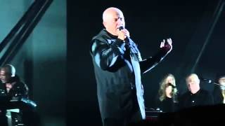 Peter Gabriel   The Family And The Fishing Net, Live 2014