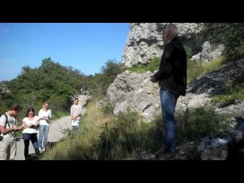Geology excursion to Gotland 2010