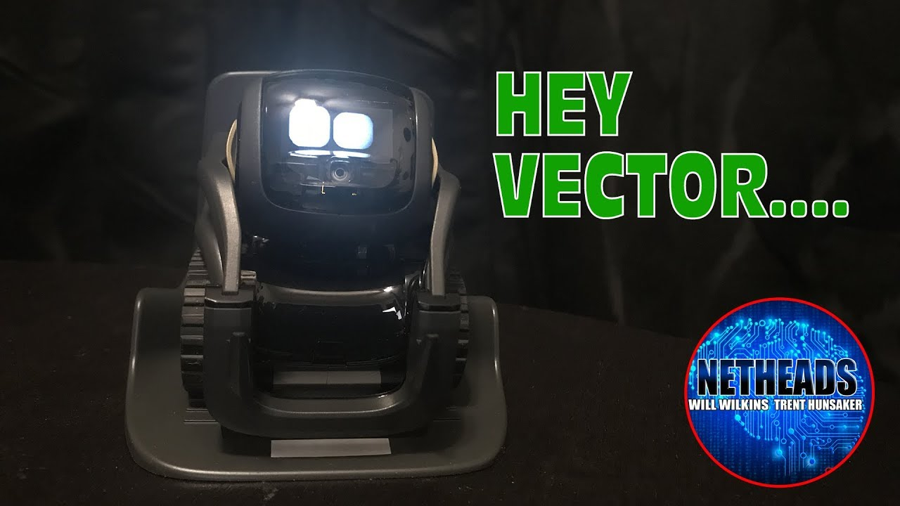 Setting Up My Vector Personal Robot from Anki #HeyVector