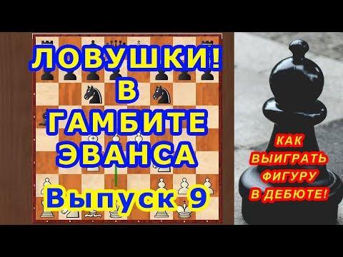 Шахматы ♔ Как ВЫИГРАТЬ ФИГУРУ! в дебюте ГАМБИТ ЭВАНСА! ⚔ Шахматные ЛОВУШКИ! ♕