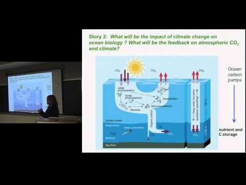 CITA 415: Role of the Ocean in climate change: the carbon story