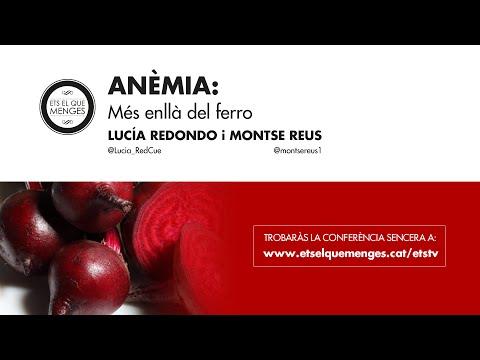 Causes i conseqüències de l'anèmia I Conferència amb Lucía Redondo i Montse Reus