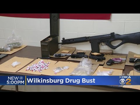 Wilkinsburg Police Arrest 7 In Wallace Avenue Bust