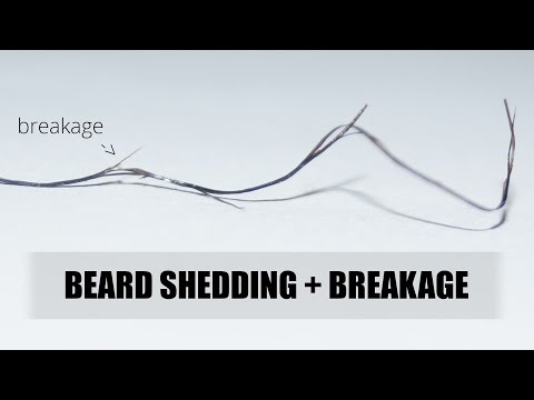Your Beard Is FALLING Out? Calling Out Beard Shedding & Breakage