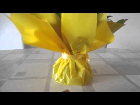 Bouquet In Bag Vase Of Water Youtube