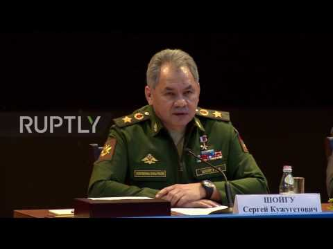 Russia: Shoigu gets his verbal claws out after UK's Fallon pokes the bear over Libya