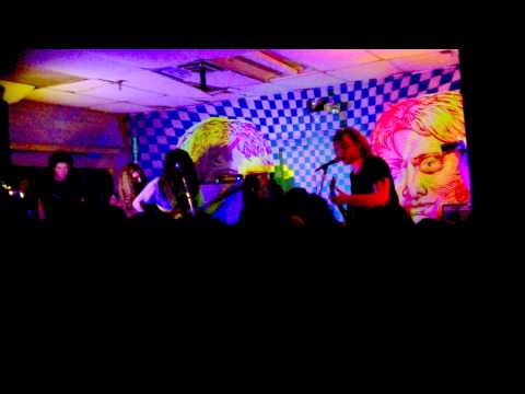 Ty Segall - Oh Mary - Live at Death By Audio on 11/14/2014 mp3