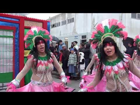 [Baú do Samba] Sócios da Mangueira   Carnaval Mealhada