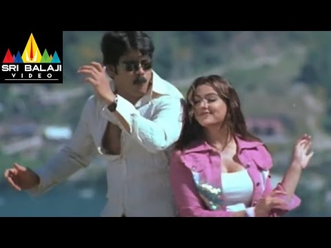 Nenunnanu Songs | Intha Dooramochaka Video Song | Nagarjuna, Aarti Aggarwal | Sri Balaji Video