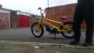 South Coast Custom Cubs BMX Cub