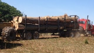 Log Truck!! hauling out of the woods. Turbo whisteling at 6:35 nice