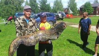 Чемпионат  Ярославской области по ловле рыбы спиннингом с лодок.