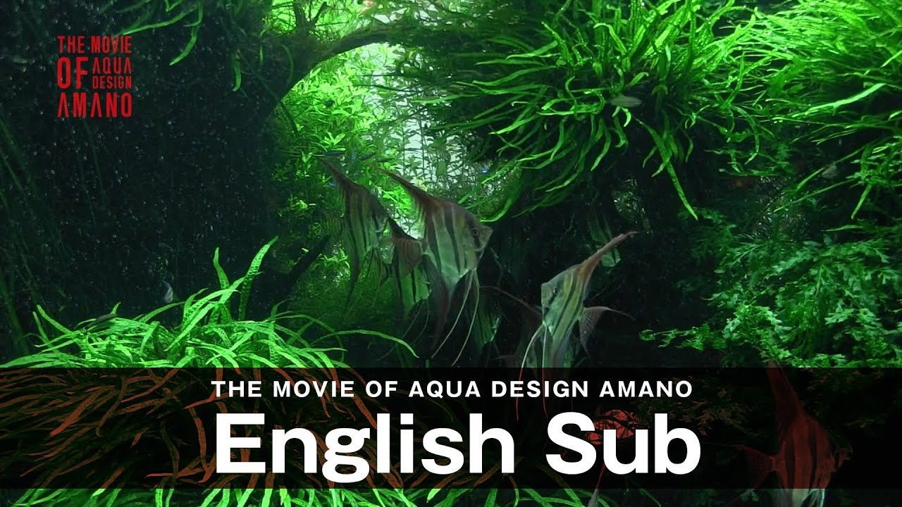 adaview the movie of aqua design amano side concept english sub youtube. Black Bedroom Furniture Sets. Home Design Ideas