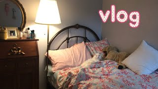 vlog 이케아에서 쇼핑 집꾸미기 리얼까르보나라 양배추…
