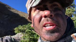 Traditional Archery Elk Hunt Pt. 1 350 inch on Public Land! Longbow Elk Colorado