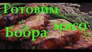 видео Как приготовить мясо бобра в домашних условиях