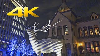 Tokyo Garden Terrace Kioicho Christmas Lights 2019 東京ガーデンテラス紀尾井町クリスマスイルミネーション (RX0 II) -  TOKYO TRIP
