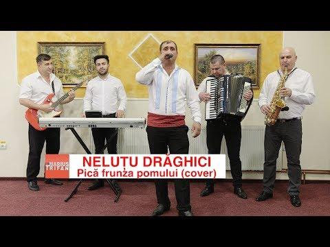 Nelutu Draghici - Pica frunza pomului (cover) colaj sarbe LIVE 2018