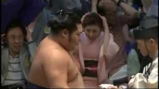 千代大龍、日馬富士から連続金星ゲット sumo chiyotairyu harumafuji.