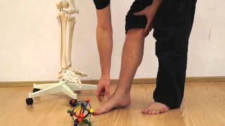 Posture Training 3: The forefoot strike : Natural walking for pain relieve