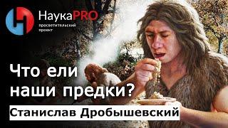 Станислав Дробышевский - Что ели наши предки?