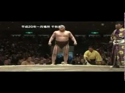 National Art of Sumo volume 17 : 2007 -- 2010