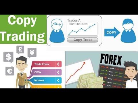 octafx-copytrading-tutorial---android-app---octafx-forex-broker