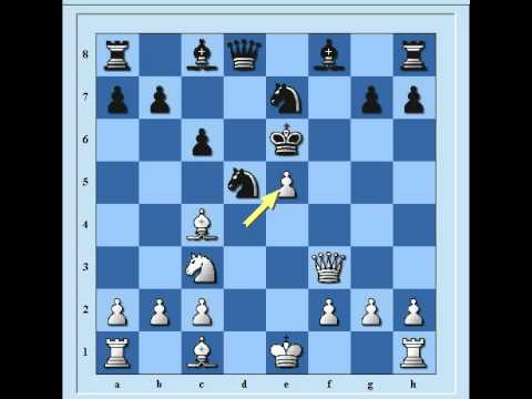 شطرنج هجوم فريد ليفر