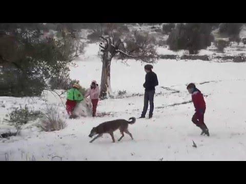 Cyprus Snow 2016