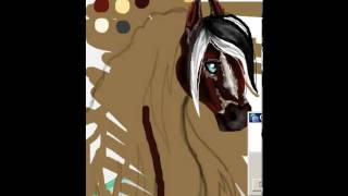 roiworld drawing Feminine Mystique Appaloosa Horse