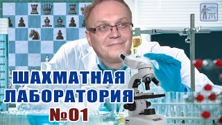 Шахматная лаборатория № 01. Игорь Немцев. Обучение шахматам