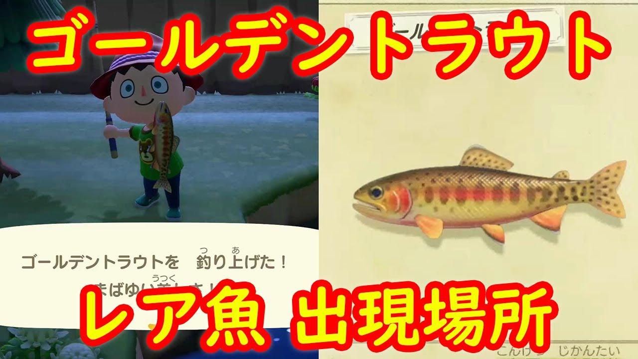 南半球 あつ 森魚 【あつ森】南半球のレア魚をマルチプレイで大量ゲット!深海魚デメニ...