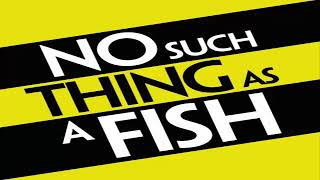 No Such Thing As A Fish - No Such Thing As Footprints On The Sea