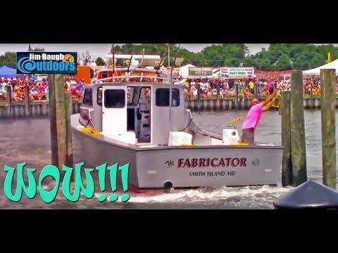 Clam Slam Boat Docking Contest 2015 Cape Charles Eastern Shore Virginia Jim Baugh Outdoors TV