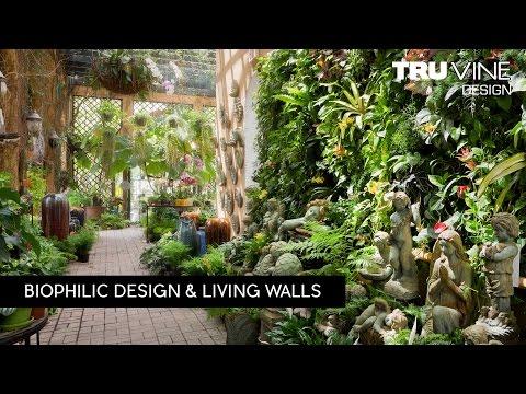 Florida Landscape Design #84 | Living Walls By TruVine Design | Delray Beach, Florida
