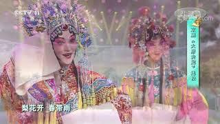 [梨园闯关我挂帅]京剧《大唐贵妃》选段 演唱:周旋| CCTV戏曲 - YouTube