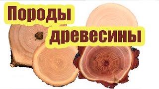 видео Достоинства и недостатки древесины как материала
