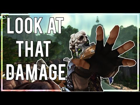 LOOK AT THAT DAMAGE - (Survival Hunter PvP) Warlords of Draenor 6.2