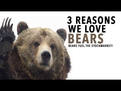 3 Reasons We Love Bears! SHORTS FUEL THE STOCK MARKET