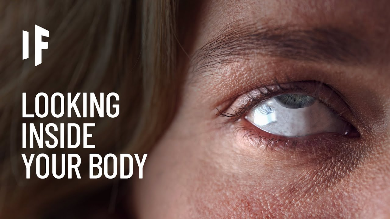 What If We Could Look Inside Our Bodies?