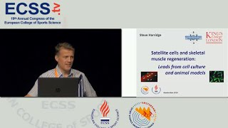 Satellite cells and skeletal muscle regeneration; leads from cell culture... - Prof. Harridge