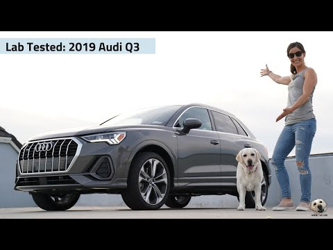 2019 Audi Q3: Andie the Lab Review!