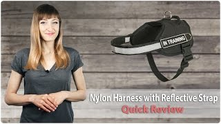 Dog Training Equipment Review. Durable Nylon Dog Harness With Reflective Strap