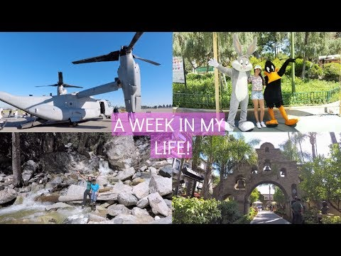 A WEEK IN MY LIFE! (Travel Diary)