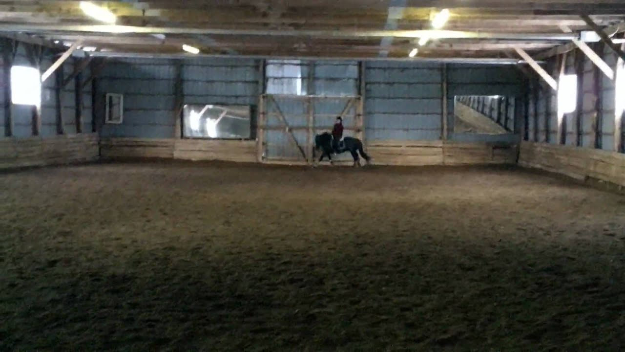 Parker and I testing out a treeless saddle   good for a laugh!
