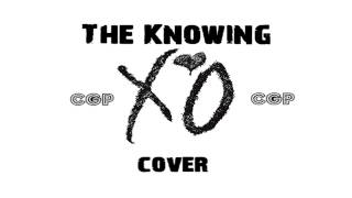 The Weeknd - The Knowing (Fresh Micks Cover)