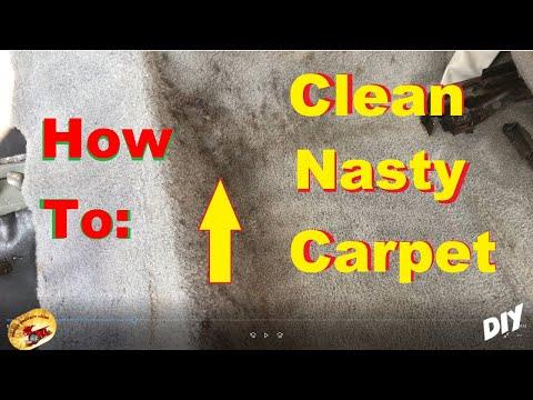 AMAZING Way To SUPER CLEAN The NASTIEST Carpet !