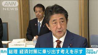 総理「何をすべきか判断」消費懸念などで経済対策へ(19/11/08)