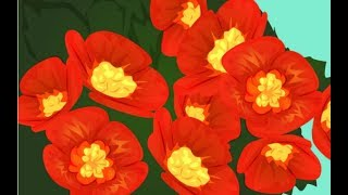 видео 8 самых неприхотливых комнатных растений